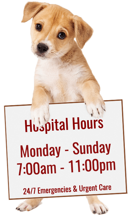 Hospital Hours Monday through Sunday 7am to 11pm. 24/7 Emergencies and Urgent Care