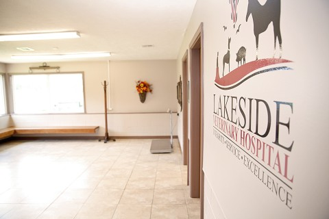 The waiting area and inside sign for Lakeside Veterinary Hospital